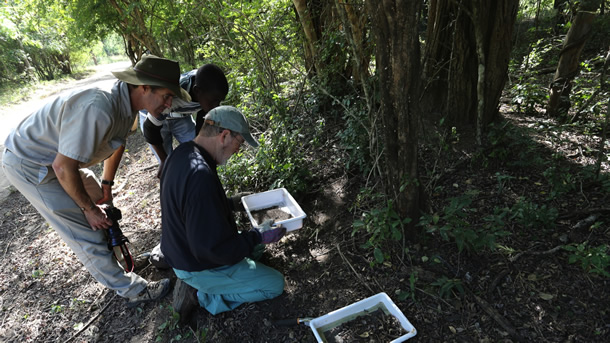 gorongosa-scientists-for-mission-statement