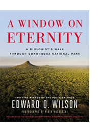 window-on-eternity-cover-w-border