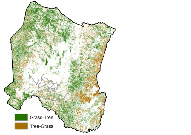 gorongosa-tree-map-640