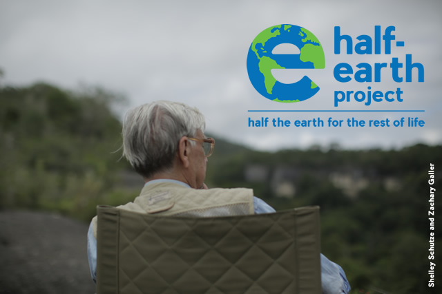 half-earth-graphic-for-page